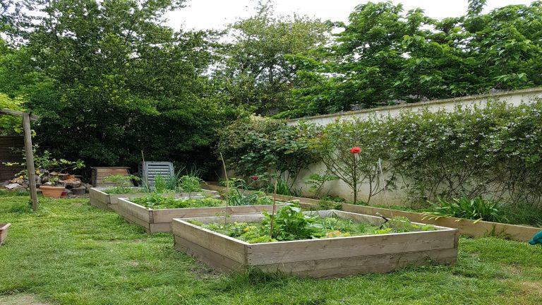 Maison jardin 7